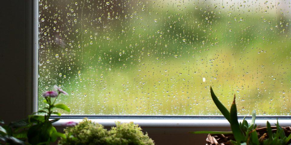 Window during rainy season