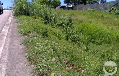 Cebu, Cebu Lot For Sale | MyProperty ph